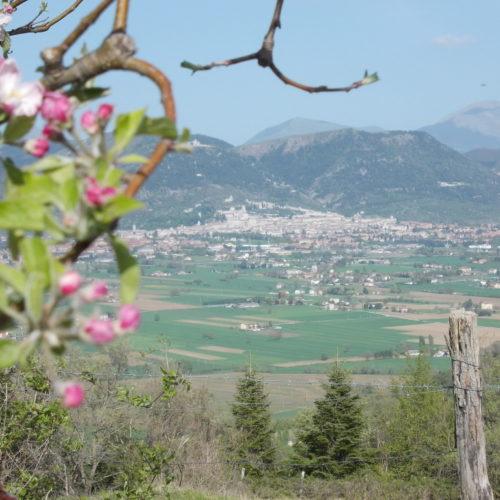 12 Gubbio Vista Dal Meleto