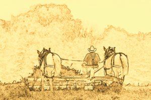 Fienagione con cavalli-lite
